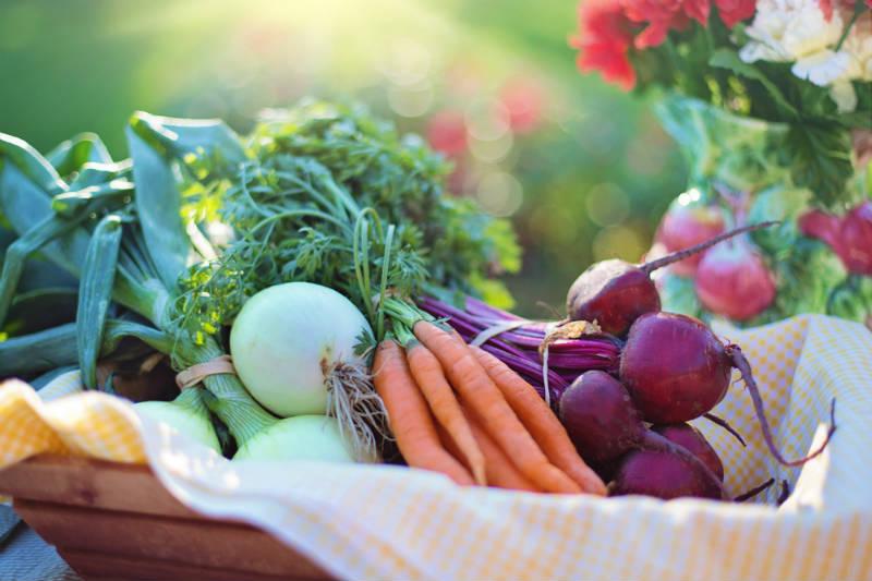 Family Strengths Network :: Community Garden